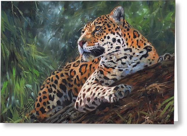 Jaguar In Tree Greeting Card by David Stribbling