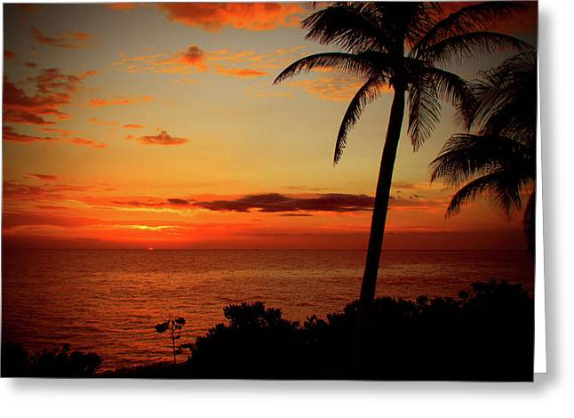 Jamaican Sunset Greeting Card by Kamil Swiatek