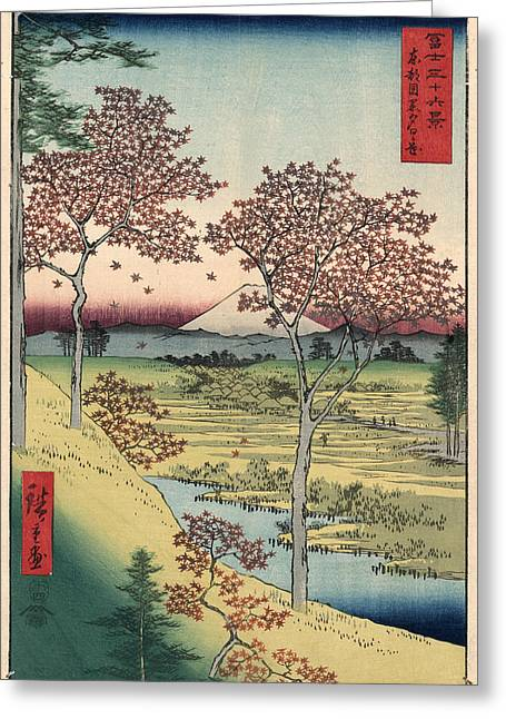 Edo Period Greeting Cards - Japan: Maple Trees, 1858 Greeting Card by Granger