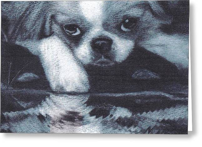 Japanese Chin Deep Thoughs Greeting Card