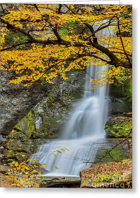 Japanese Falls Greeting Card
