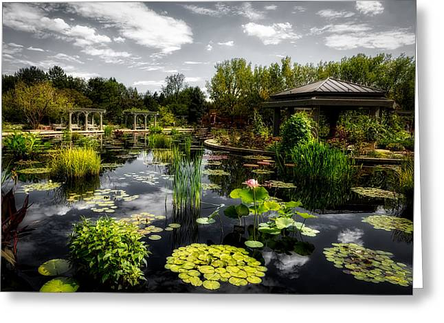 Japanese Garden And Lagoon Greeting Card by Mountain Dreams