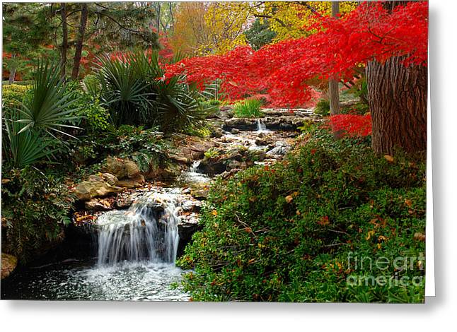 Ft Worth Greeting Cards - Japanese Garden Brook Greeting Card by Jon Holiday