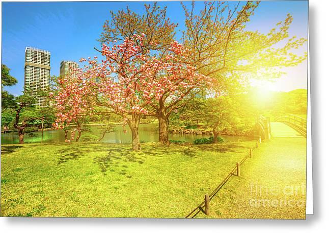 Japanese Garden Cherry Blossom Greeting Card