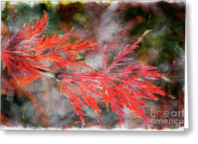 Japanese Maple - Digital Paint Greeting Card
