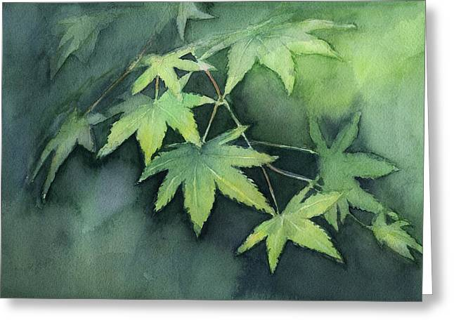 Japanese Maple  Greeting Card by Olga Shvartsur