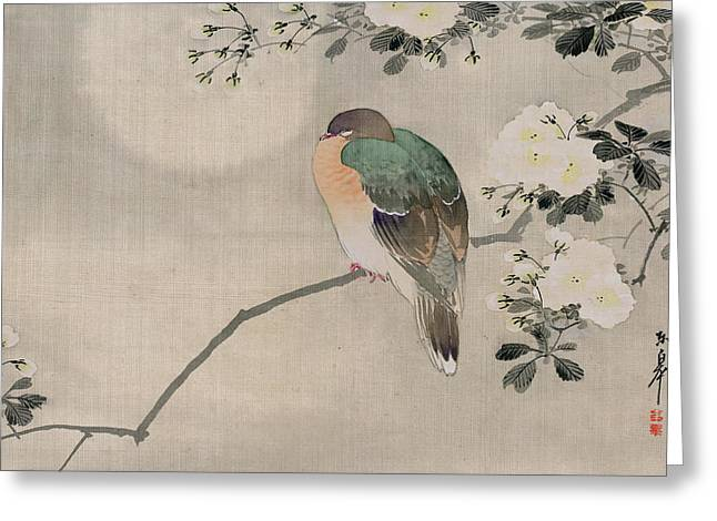 Japanese Silk Painting Of A Wood Pigeon Greeting Card by Japanese School