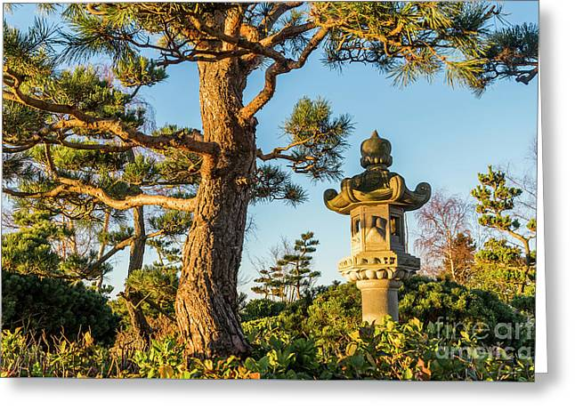 Japanese Stone Lantern Greeting Card