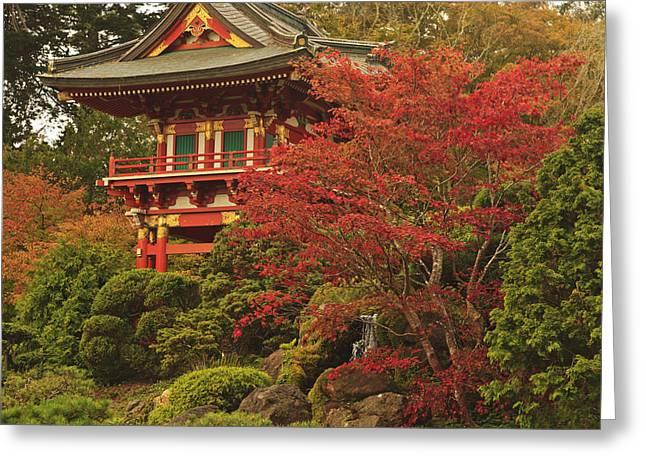 Japanese Tea Garden In Golden Gate Park Greeting Card by Stuart Westmorland