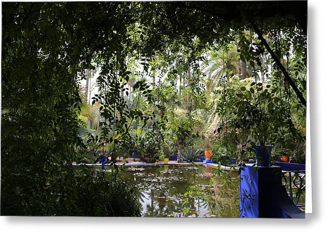 Greeting Card featuring the photograph Jardin Majorelle 2 by Andrew Fare
