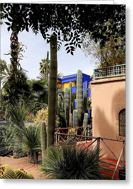 Greeting Card featuring the photograph Jardin Majorelle 4 by Andrew Fare