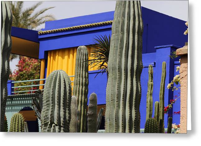 Greeting Card featuring the photograph Jardin Majorelle 5 by Andrew Fare