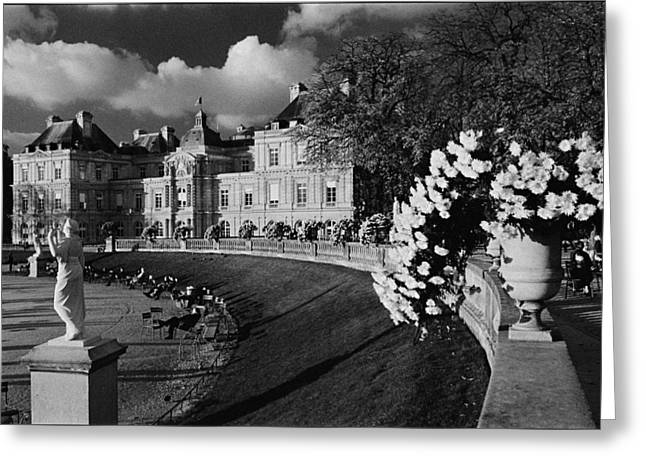 Galeria Greeting Cards - Jardins de Luxembourg Greeting Card by Aldo Cervato
