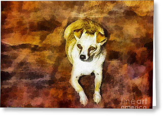 Greeting Card featuring the photograph Jasper by Rhonda Strickland