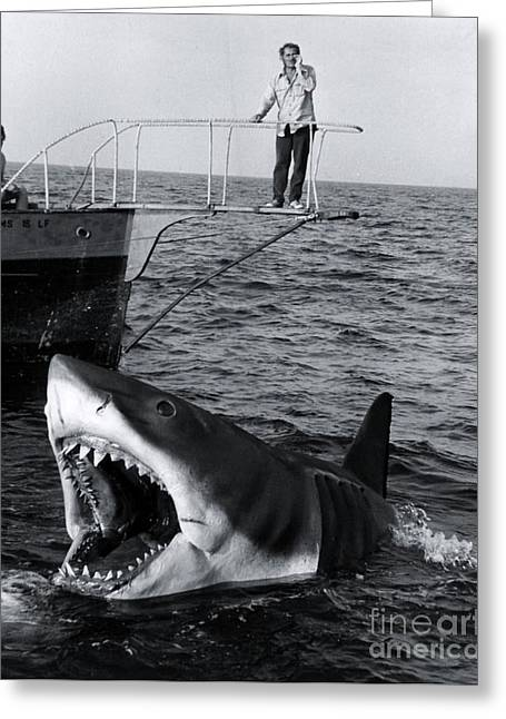 Jaws - 1975 Greeting Card by The Titanic Project