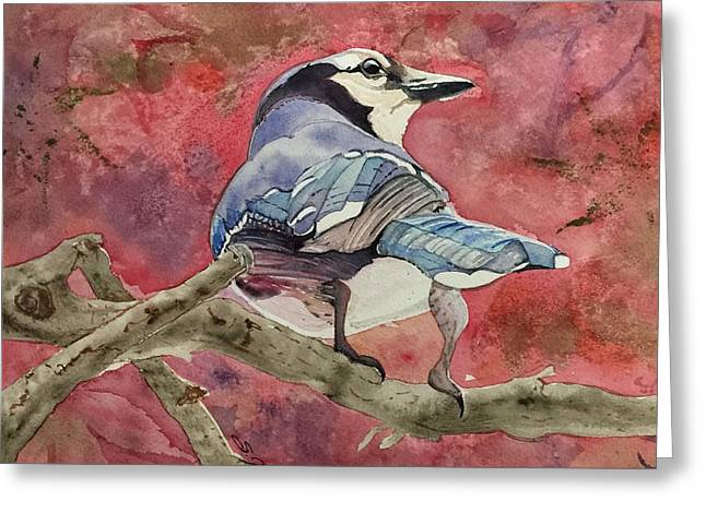 Jay In The Japanese Maple Greeting Card