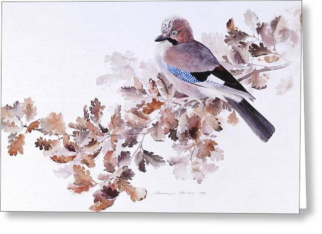 Jay On A Dried Oak Branch Greeting Card