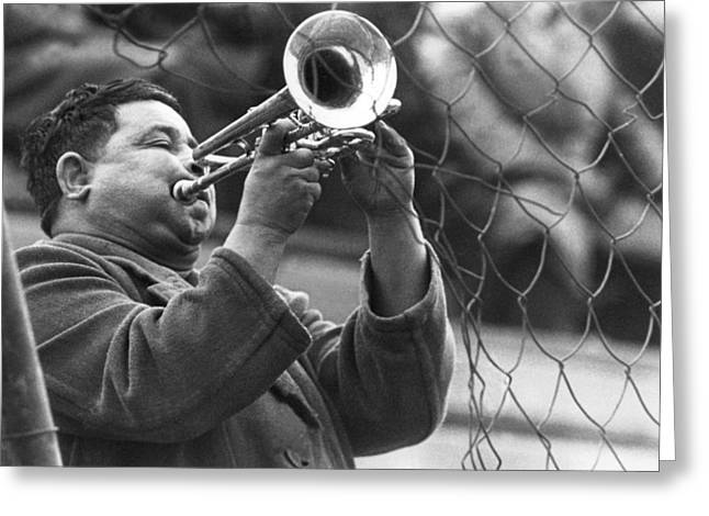 Jazz Behind A Fence Greeting Card by Emanuel Tanjala