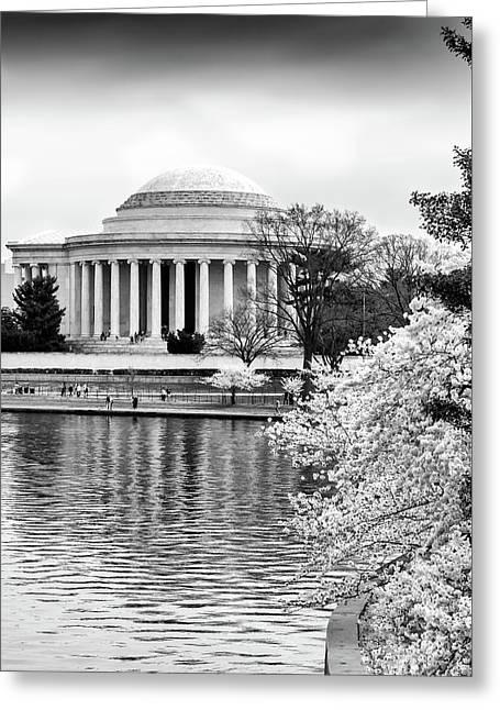 Jefferson Memorial Cherry Blosum Time Greeting Card by Paul Seymour