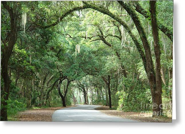 Jekyll Island Arches Greeting Card by Frances  Dillon