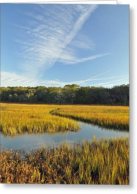 Jekyll Island Marsh High Tide And Sky Greeting Card by Bruce Gourley