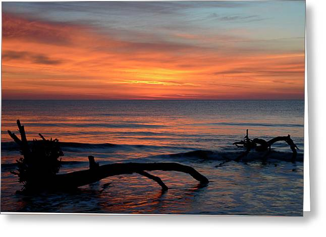 Greeting Card featuring the photograph Jekyll Island Sunrise 2016c by Bruce Gourley