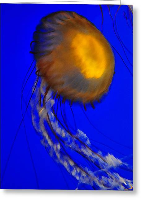 Jelly Fish In Blue Water Greeting Card
