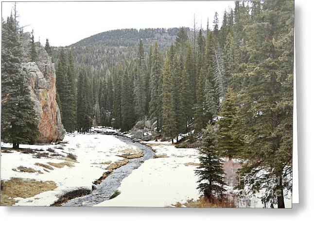Greeting Card featuring the photograph Jemez Mountains Forest Stream by Andrea Hazel Ihlefeld