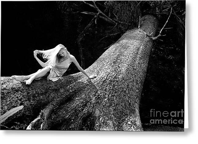 Jen On Big Log Greeting Card by Joe Klune