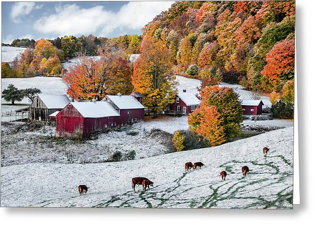 Jenne Farm, Reading, Vt Greeting Card