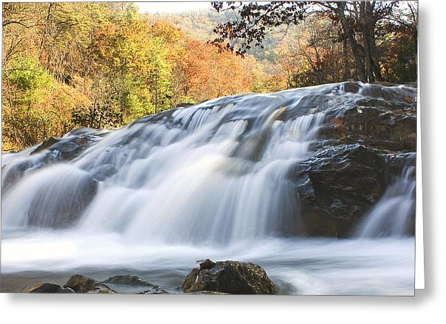 Greeting Card featuring the photograph Jennings Creek 2 by Alan Raasch