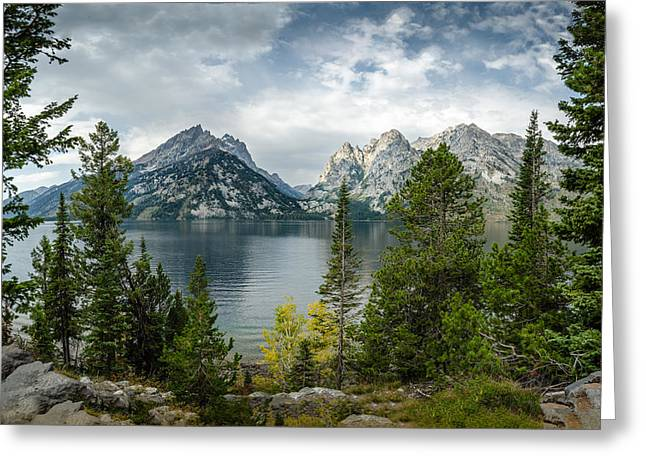 Jenny Lake Overlook Greeting Card