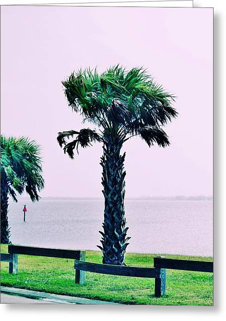 Jensen Causeway With Cross Processing Greeting Card by Don Youngclaus