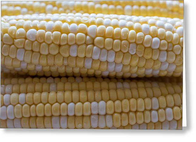 Jersey Corn On The Cob Greeting Card by Terry DeLuco