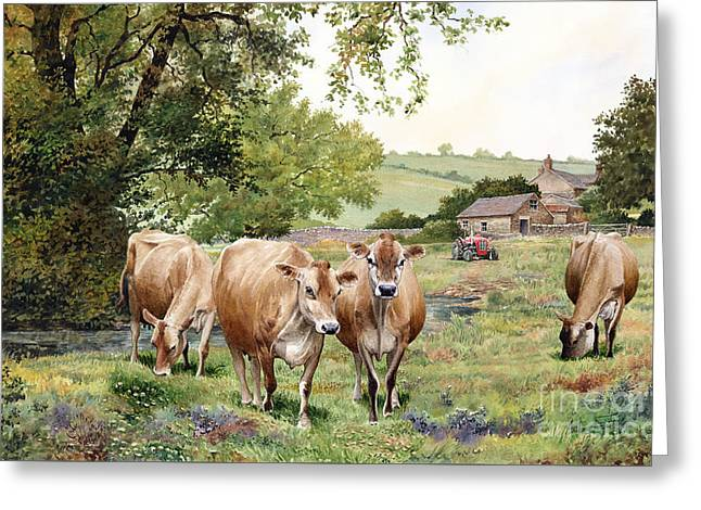 Jersey Cows Greeting Card