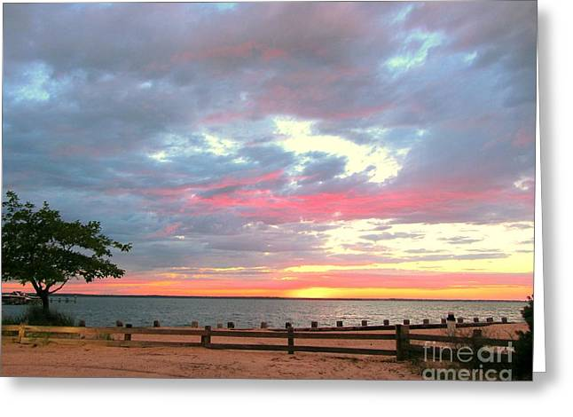Jersey Summer  Greeting Card by Susan Carella