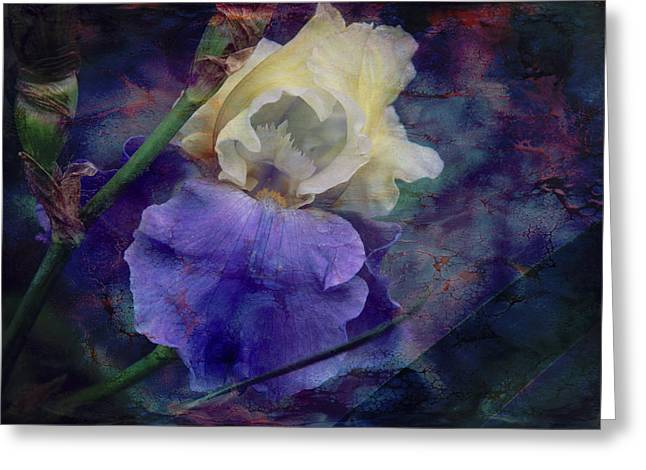 Greeting Card featuring the photograph Jeweled Iris by Toni Hopper