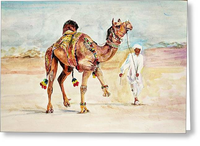 Jewellery And Trappings On Camel. Greeting Card by Khalid Saeed