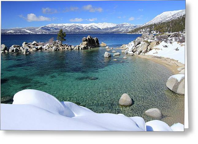 Jewels Of Winter Greeting Card