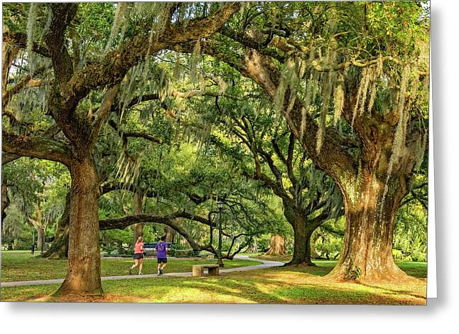 Jogging In City Park - New Orleans Greeting Card by Steve Harrington