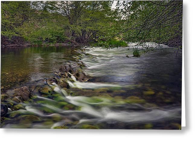 John Day River South Fork Greeting Card by Leland D Howard