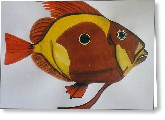 John Dory Greeting Card