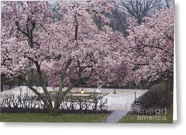 John F Kennedy Memorial In Spring Greeting Card by Tim Grams