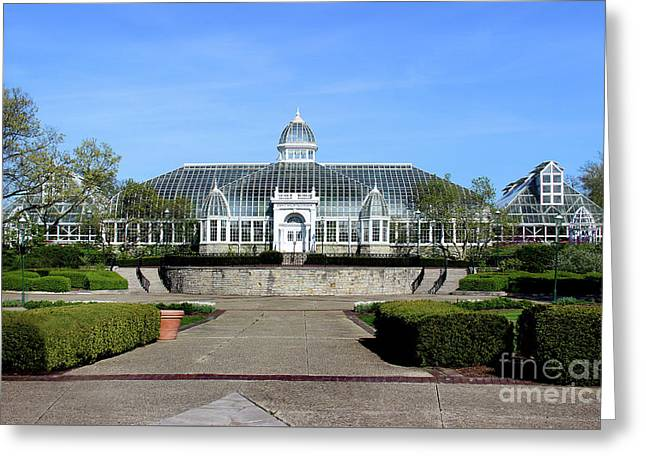 John F Wolfe Palm House At Franklin Park Greeting Card