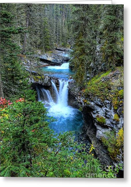Johnston Canyon Falls Hike Lower Falls Greeting Card