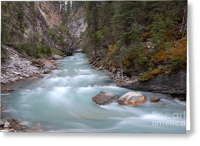 Greeting Card featuring the photograph Johnston Canyon In Banff National Park by RicardMN Photography