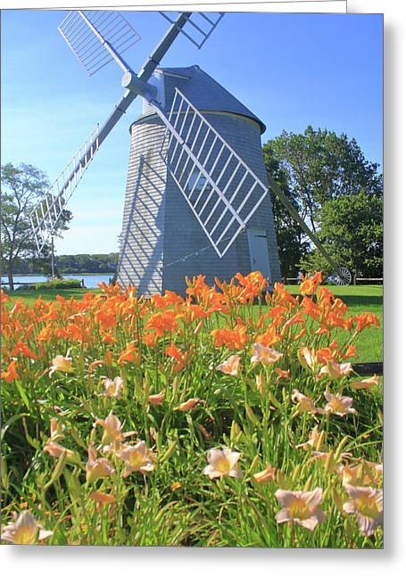 Jonathan Young Windmill Summer Lilies Cape Cod Greeting Card