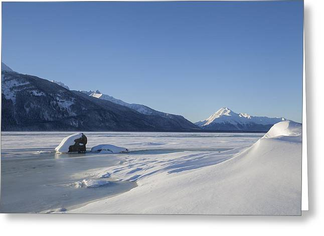 Jones Point In Winter Greeting Card