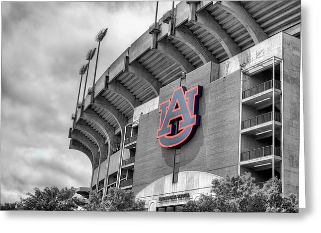 Jordan Hare Greeting Card by JC Findley