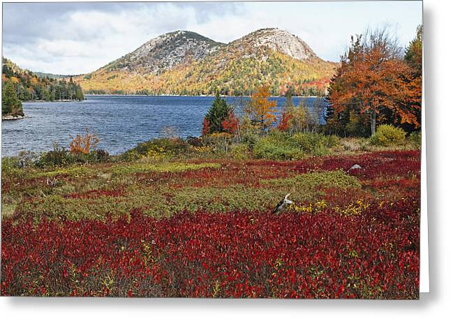 Jordan Pond And The Bubbles Greeting Card by George Oze